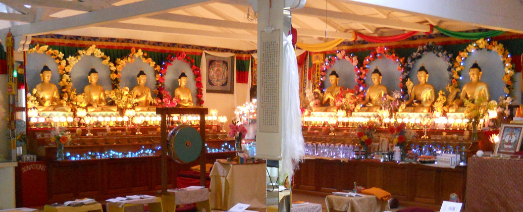 8-medicine-buddhas-in-gompa-web