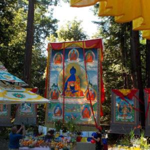 Medicine Buddha Festival 2018