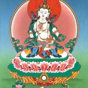 Vajrasattva Purification and Tsog