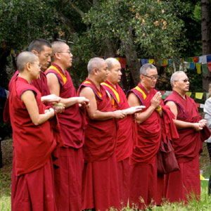 Sera Lachi Monks: Medicine Buddha Puja