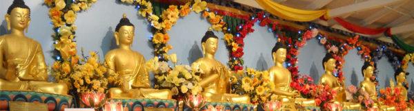 feature-medicine-buddhas