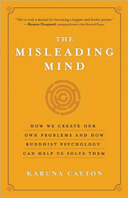 The Misleading Mind book