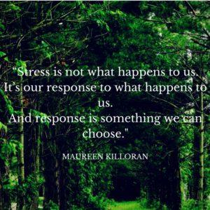Stress Management Daylong